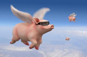 pigs-fly-mike-mcglothlen